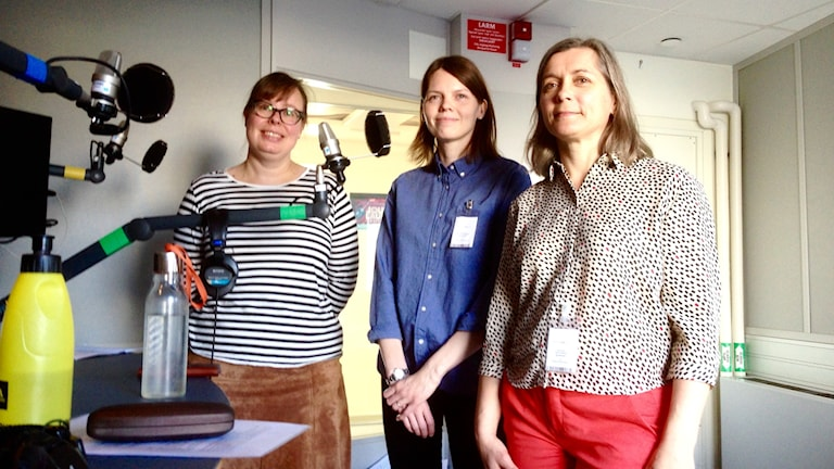 Riina Heikkilä, Hanna Kohvakka Stjernberg ja Tarja Larsson