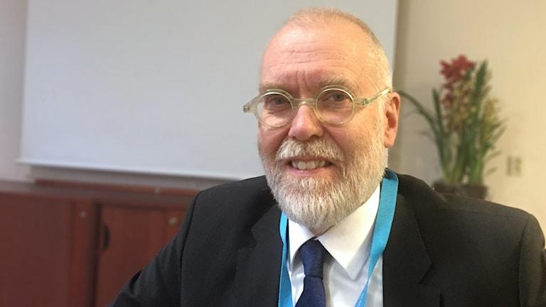 Finlands ambassadör i Sverige