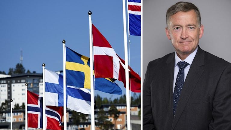 Pohjoismaiden lippuja ja Anders Ahnlid