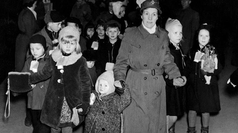 Sosanaikaisessa mustavalkoisessa kuvassa lotta kuljettaa talvivaatteisiin pukeutuneita, vakakvia lapsia. Kuvar: TT/arkisto