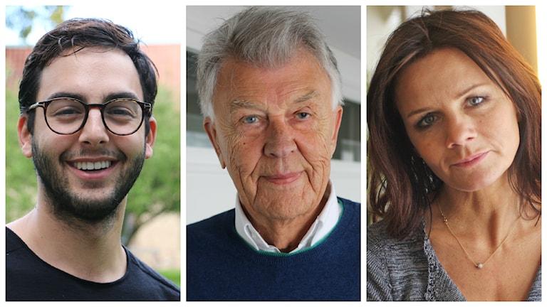 Darin, Sven-Bertil Taube och Lena Philipsson testas som utmanare på Svensktoppen. Foto: Ronnie Ritterland och Benjamin Thorén / Sveriges Radio