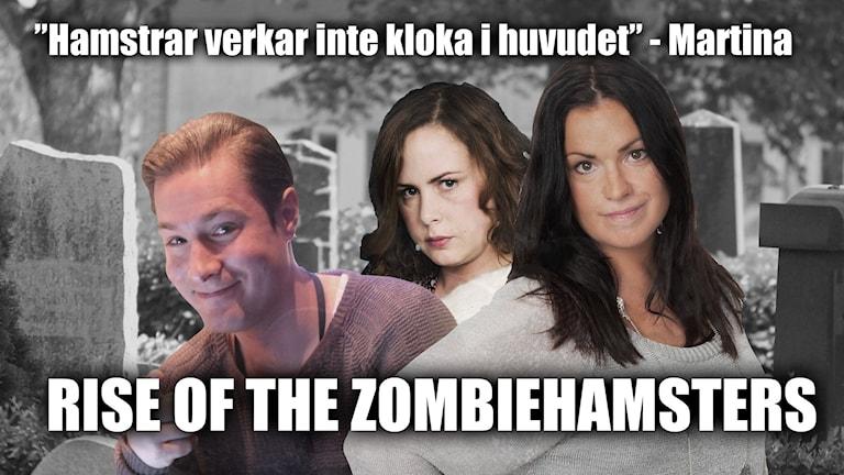 Foto: Paulo Saka/Sveriges Radio