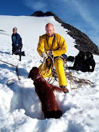 Glaciären där hunden Pia föll ner i en en spricka som heter Okstindbreen, söder om Mo i Rana. Foto: Line Ruud/Helgelendingen