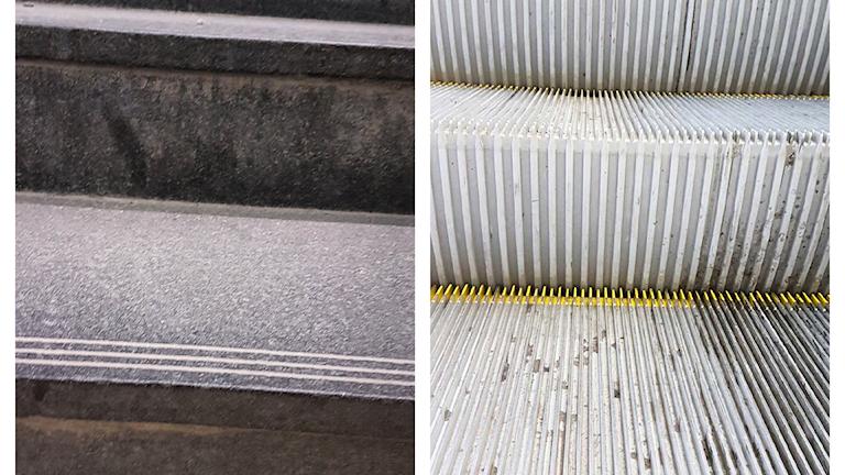 De tråkigaste bilderna någonsin på trappor (enligt David) som Victor har tagit! Foto: Victor Linnér/priva