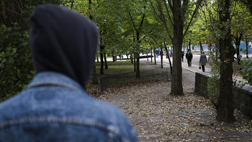 Person in a hoodie in a park.