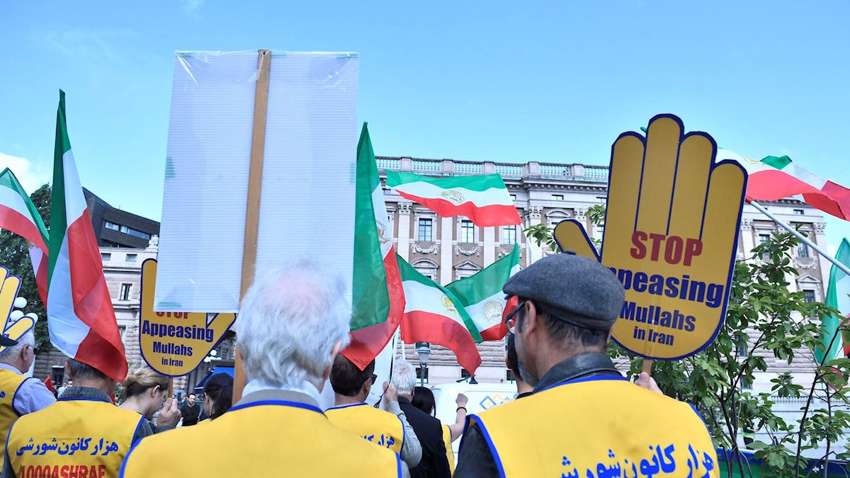 Backs of people in a demonstration with many Iranian flags.