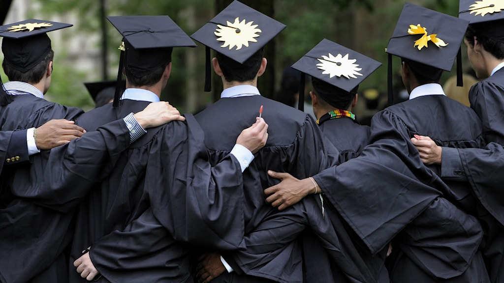 A row of students dressed in college gowns and mortar board caps.