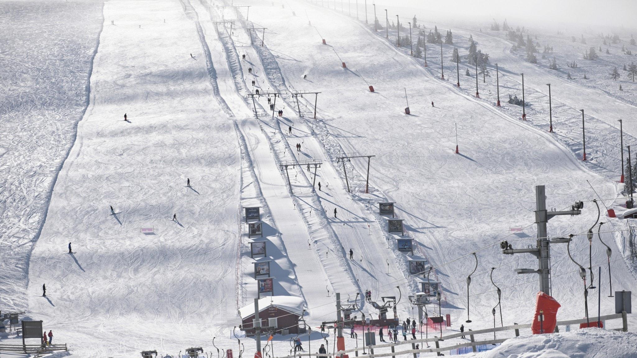 a ski slope