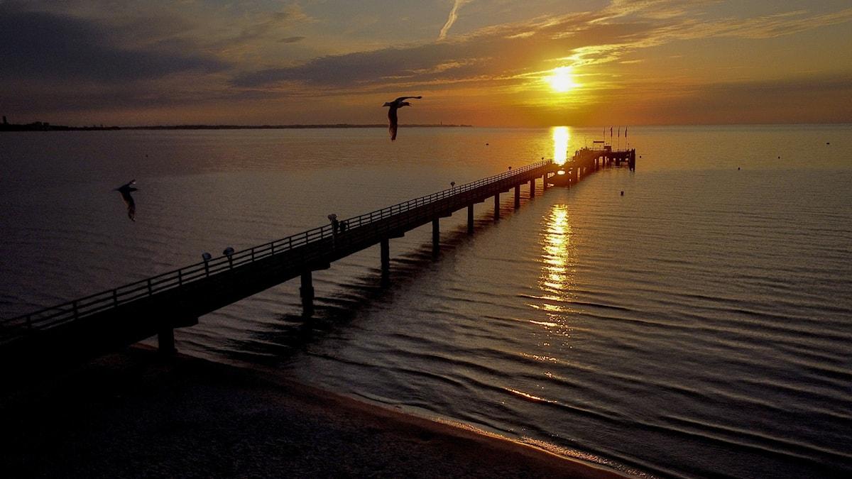 A sunrise seen across the Baltic Sea