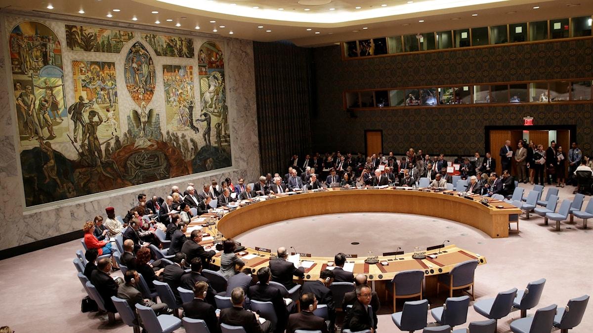 UN Security Council meeting. File photo: Seth Wenig / AP.