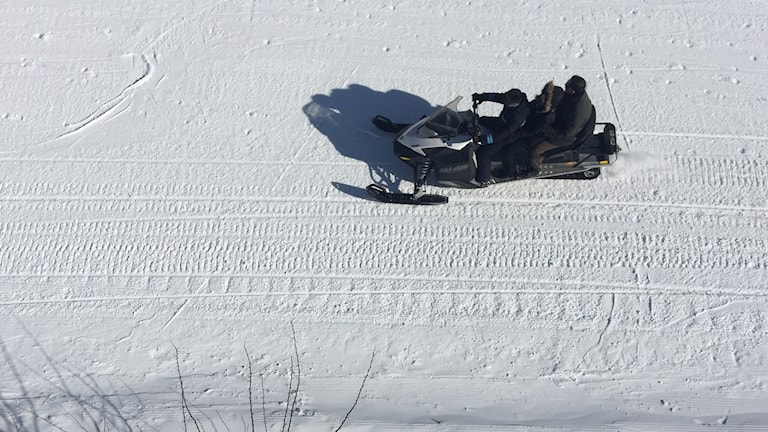 Modern snowmobiles are the leading human cause of avalanche.
