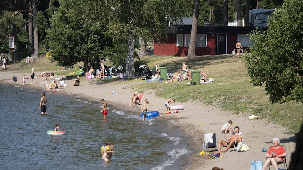An image of a beach with sand and bathers.