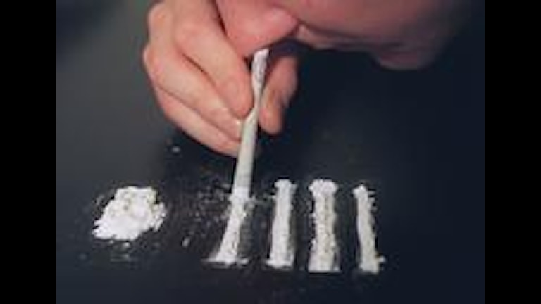 an examination of the abuse of cocaine According to the national institute on drug abuse, the effects of cocaine on the human body range from mild to severe to life physical effects of cocaine.