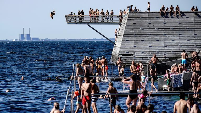 Swimmers on a dock at the Öresund strait.