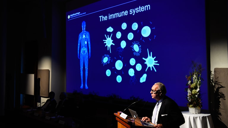 in a darkened room, a person standing in front of a powerpoint presentation depicting the immune system