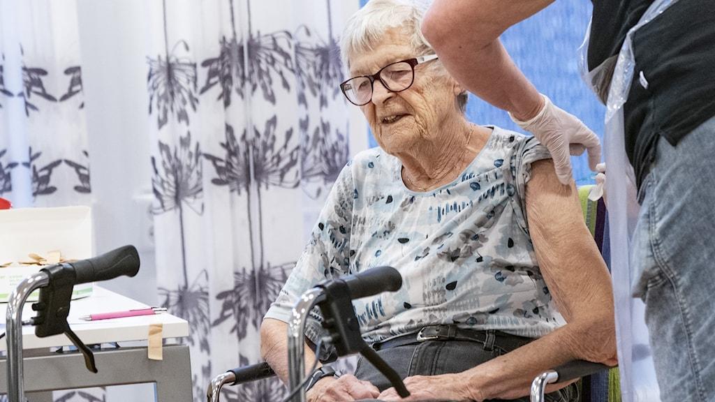 elderly vaccine