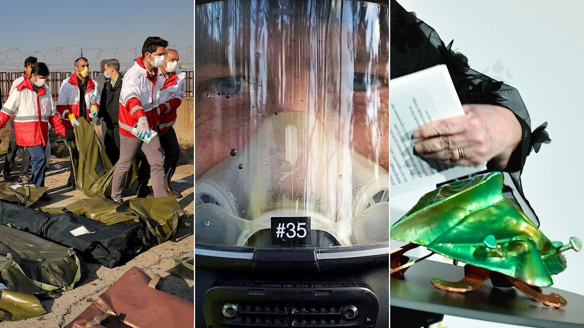 Three photos of rescue workers by body bags, the masked face of a firefighter and a green beetle statue.