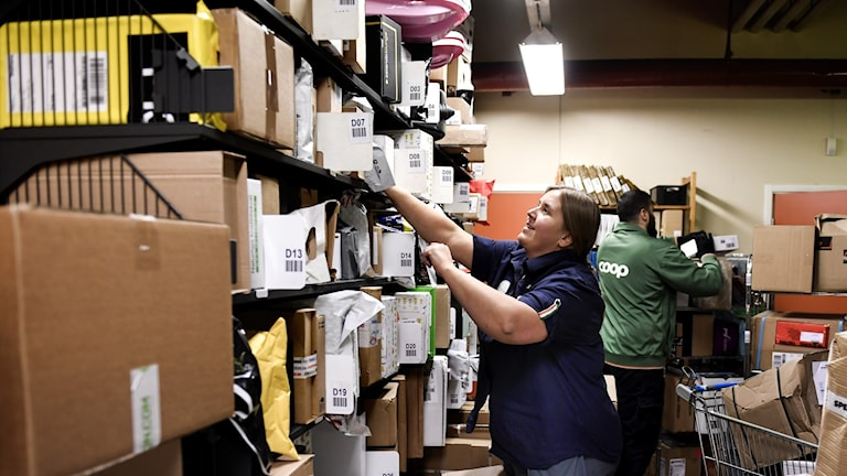Two women in a back room sorting through shelves of cardboard boxes and envelopes.