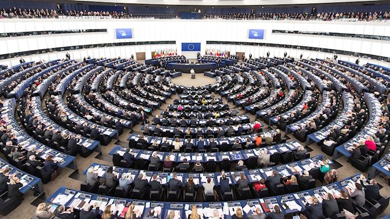 EU Parliament. Photo: Patrick Seeger / AP / TT.