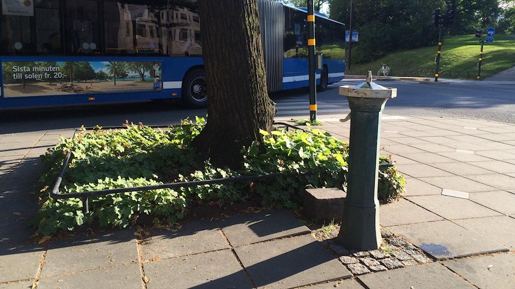 A drinking fountain in the Swedish capital. Photo: Brett Ascarelli / Radio Sweden