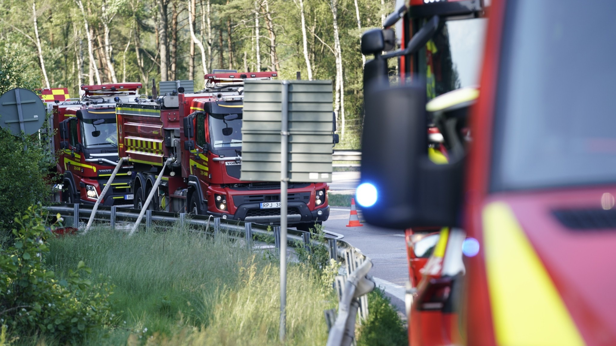 A number of fire engines in a forest