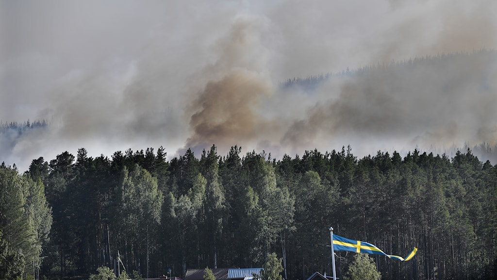 Smoke from fires rising over forest with Swedish flag in foreground