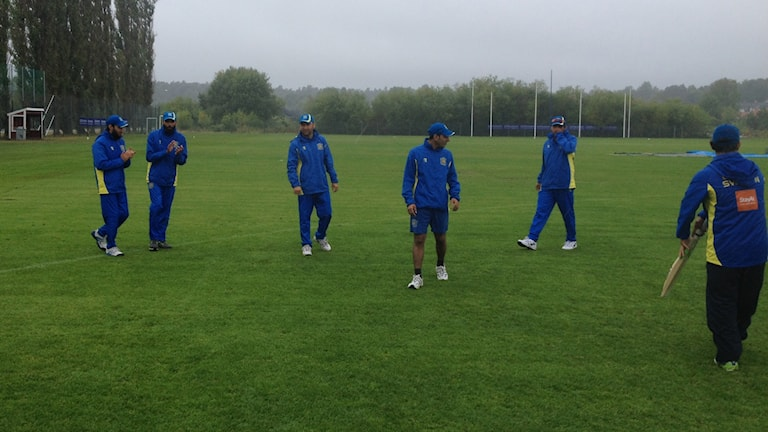 Sweden cricket