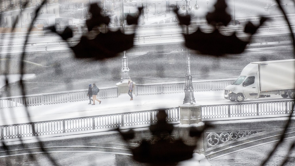 A view through a parliament window out to a snowy street.