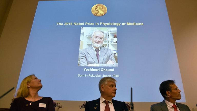 Cell biologist Yoshinori Ohsumi has won the Medicine Nobel for 2016.
