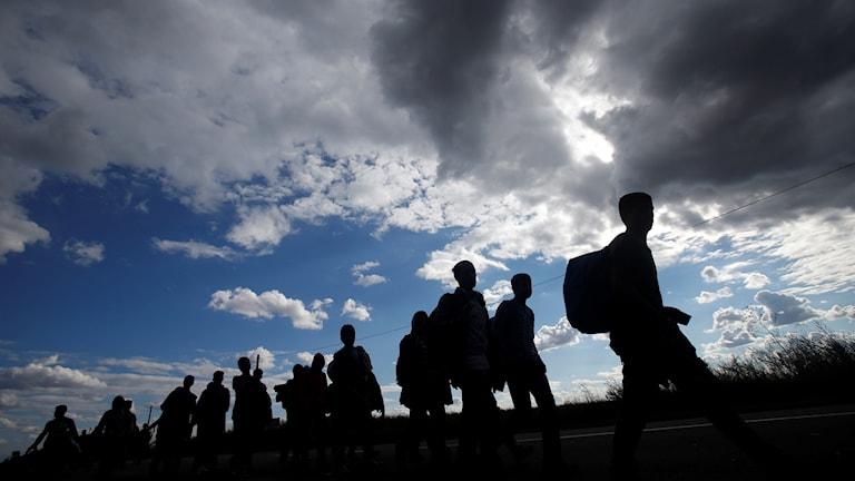 Asylum seekers walking in Serbia.