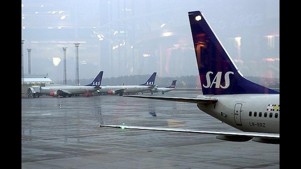 Arlanda airport. Photo: SVT Bild