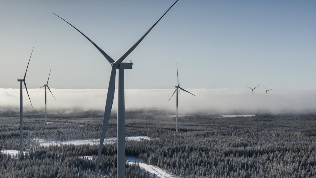 View of a vast area with several wind turbines.