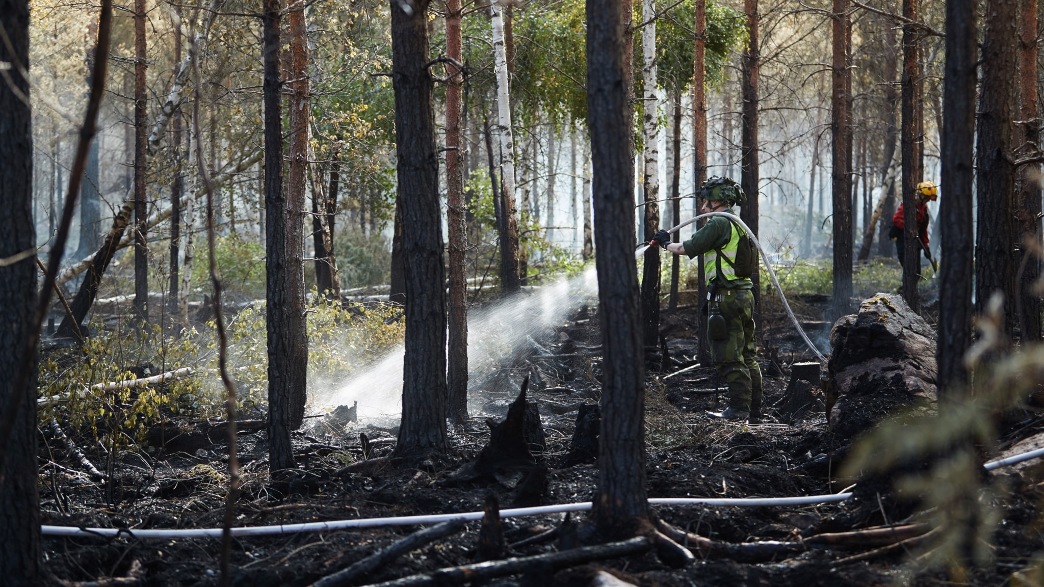 Wildfires, 'Muslims in Sweden: the first 1300 years', Stockholm BBQ ban, and Sweden likely to achieve 2030 renewable goals this year