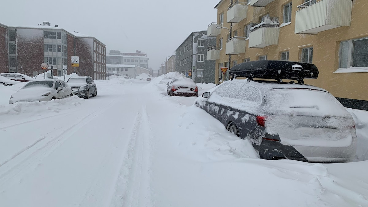 Cars and a streetscape covered in snow.