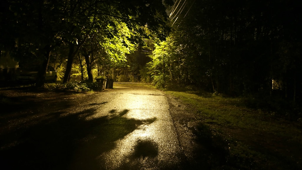 Street light over a walking path, surrounded by darkness.