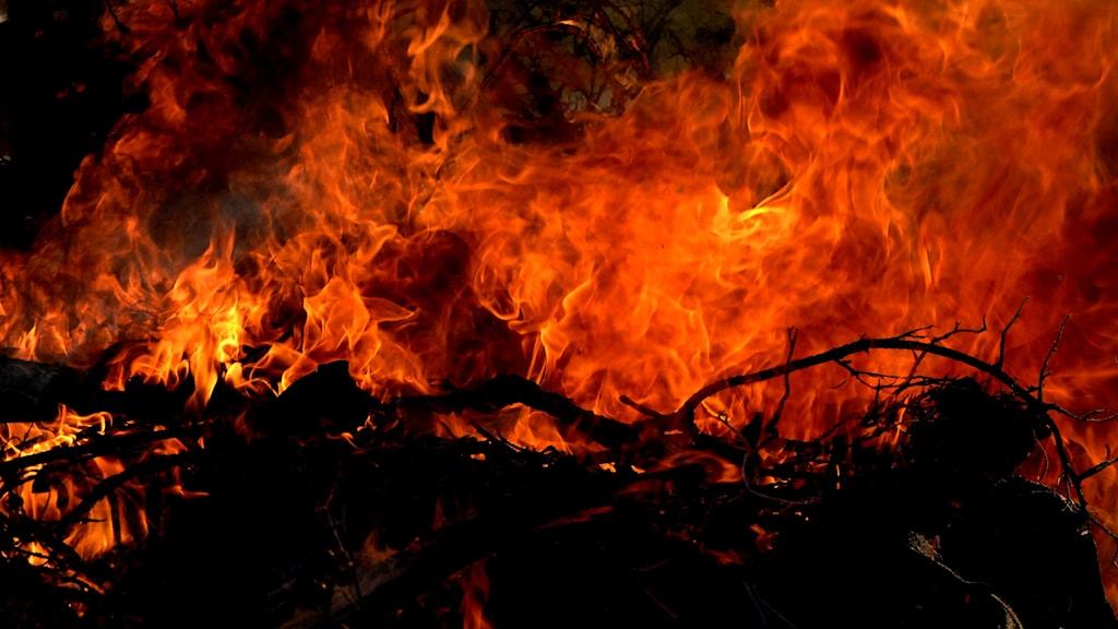 Large blaze