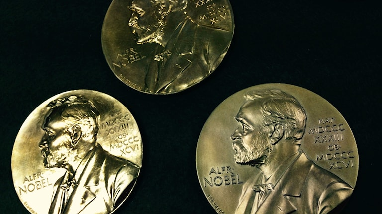 Samples of the Nobel Medals in various stages of completion. Photo: Frank Radosevich / Radio Sweden.