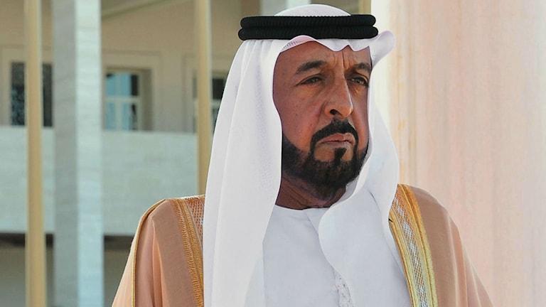 The UAE is ruled by princes, with head of state Sheik Khalifa bin Zayed Al Nahyan. Photo: Turkish Presidency Press Office/TT