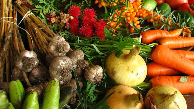 organic ekologiskt