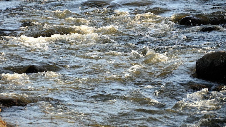 Water, water everywhere but can Sweden export it overseas. Photo: Staffan Almquist / TT.
