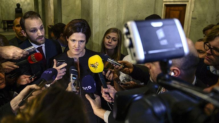 Moderate parliamentary group leader Anna Kinberg Batra. Photo: Bertil Ericson/TT.