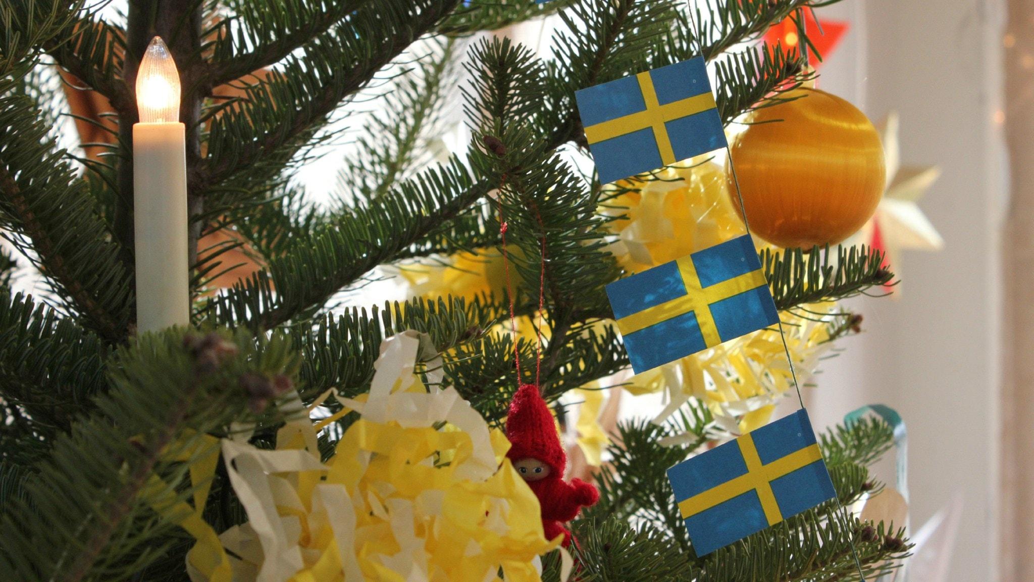 Christmas In Sweden.Real Christmas Trees Better For Environment Says Farmers