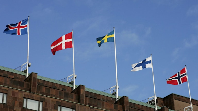 The flags of the five Nordic countries. Photo: Henry Montgomery/TT
