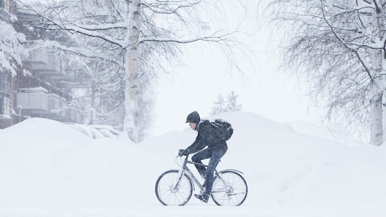 On Monday, the Swedish weather service's station in Berghnäset in Luleå measured 110 cm of snow, the highest since the first measurement was taken in 2002.Photo: Susanne Lindholm / TT