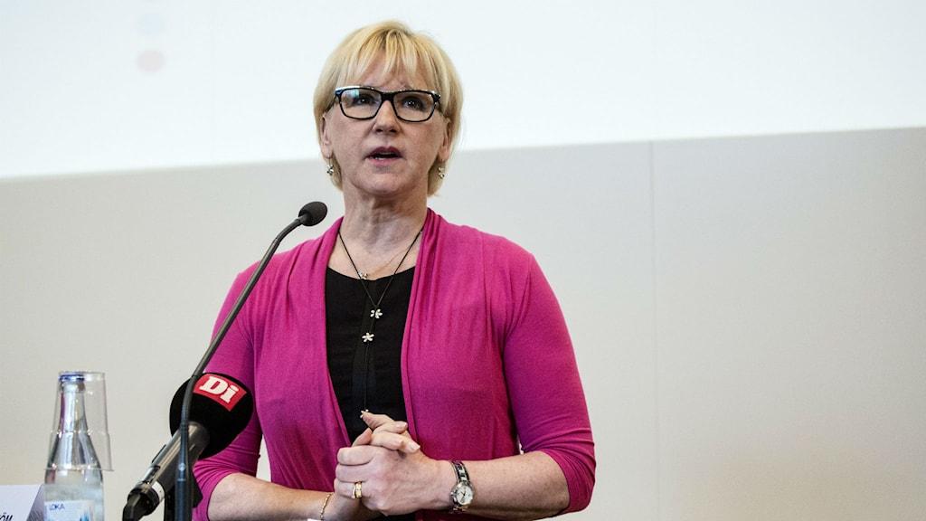 Foreign Minister Margot Wallström. Photo: Christine Olsson / TT