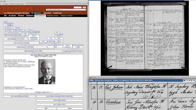 Vanhoja dokumentteja tarvitaan sukututkimuksessa. Släktforskning bedrivs med gamla dokument. Foto: Bernt Ekdahl/TT.