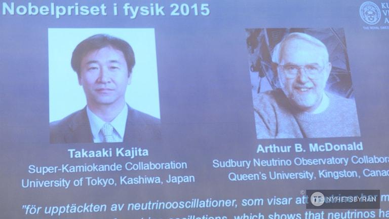 Wergirên xelata fizîkê ya Nobelê. Photo: Fredrik Sandberg / TT