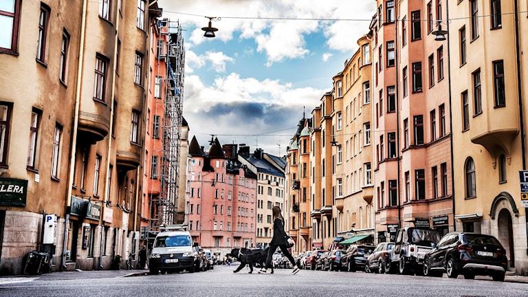 Photo: Tomas Oneborg / SvD / TT
