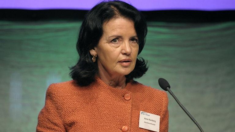 Anne Ramberg of the Swedish Bar Association. Photo: Ulf Palm/TT