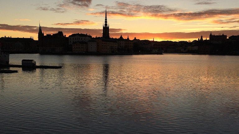 Will we still be able to get our drinking water from Lake Mälaren in 2100? Photo: Brett Ascarelli / Radio Sweden